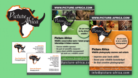 Picture Africa huisstijl