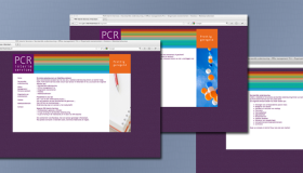 Website PCR Interim Services